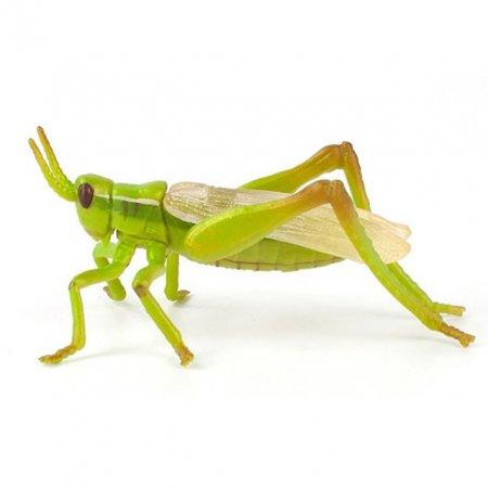 곤충 모형완구 메뚜기 디테일 피규어 곤충장난감