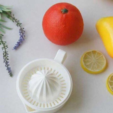 레이카 과일착즙기 일체형 레몬 스퀴저 즙짜기 가정용