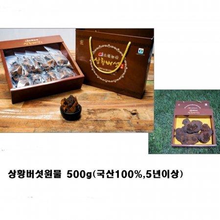 상황버섯원물 500g 홍콩수출 MBC방영 창녕군특산물