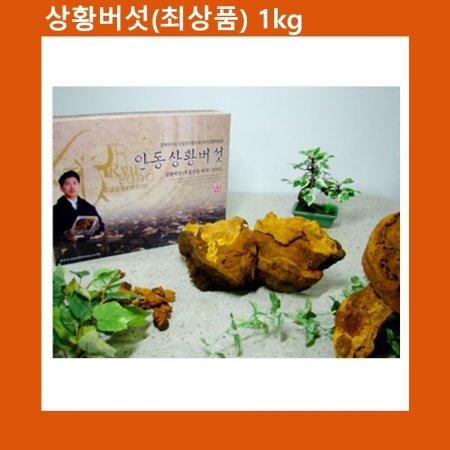 국산 상황버섯(진상품) 1kg 천상의 선물세트