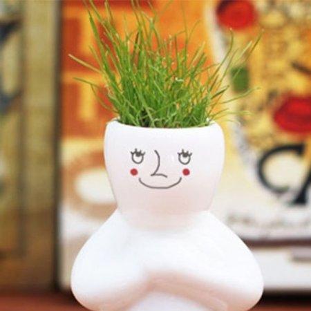 잔디 인형 화분 미니화분 홈가드닝 식물 키우기 소