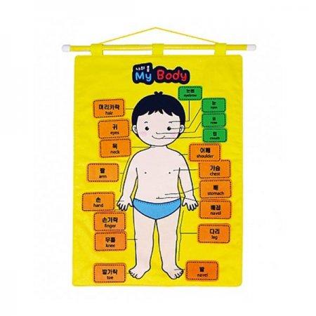 벽걸이 챠트 나의몸 챠트 교육용 장난감